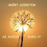 Miért szeretem és ajánlom jó szívvel az Access Bars®-t?